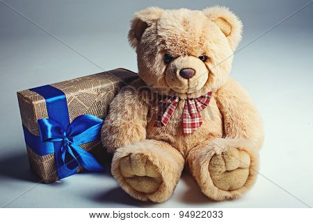 Bear Toy With Gift Box