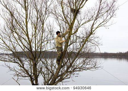 Man climbing on tree