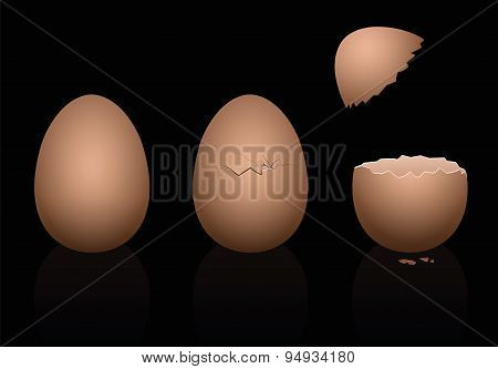 Eggs Damaged Broken Brown Black