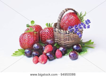 Strawberries, Cherries And Wild Strawberries