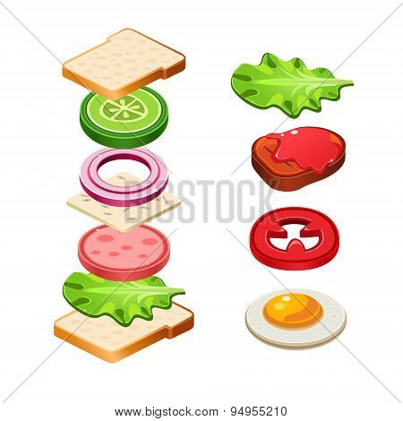 Sandwich Ingredients Food Vector Illustration