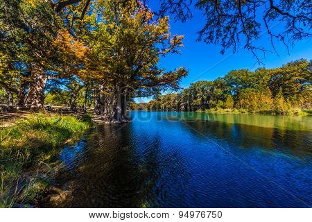 Bright Beautiful Fall Foliage On The Crystal Clear Frio River.