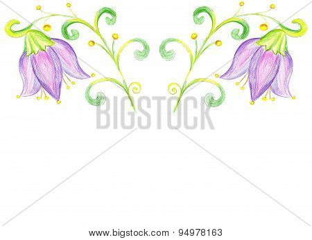 Flower Bluebell Drawing On Paper