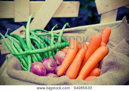 Vegetable On Sack