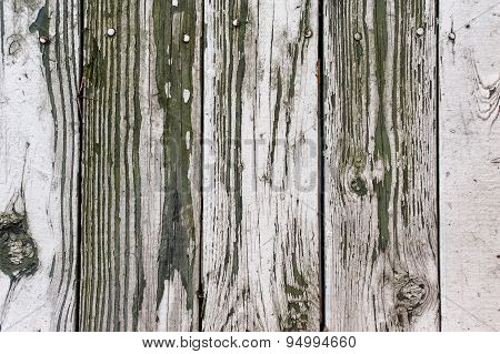 Wood background texture. old panels