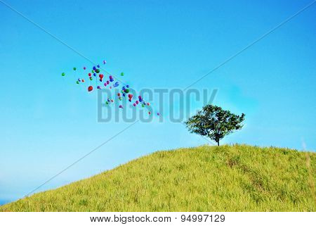 Slightly Defocussed Image Of A Tree On Top Of A Hill With Colorful Balloons Going Up To The Blue Sky