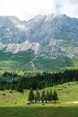 stock photo of farm land  - The rural mountainous landscape of the Altiplano de Montasio in the Friulian Alps in north east Italy - JPG