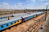 picture of nelson mandela  - Johannesburg South Africa  - JPG