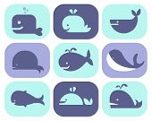 stock photo of googly-eyes  - Collection of vector whale icons and illustrations - JPG