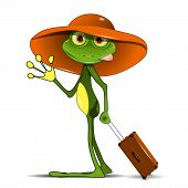 picture of amphibious  - Illustration Frog with a Suitcase in a Hat - JPG