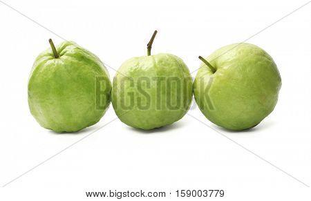 Row of Three Guava Fruits on White Background (Psidium guajava)