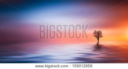 Tree at lake. Beautiful summer landscape. lake