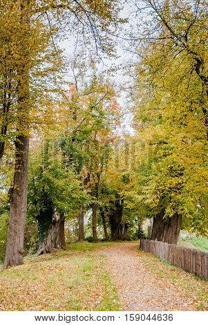 Walking Path And Fence in a park Along A Castle in the Netherlands at Autumn