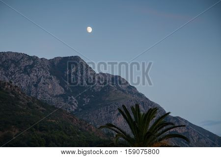 Mountain And Palm Tree, Nature Moon Landscape