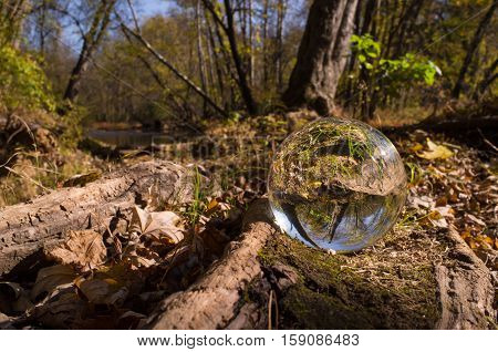 Magic crystal ball on forest floor for autumn fantasy imagery