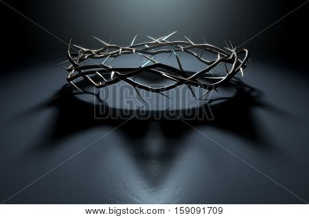 Crown Of Thorns With Royal Shadow