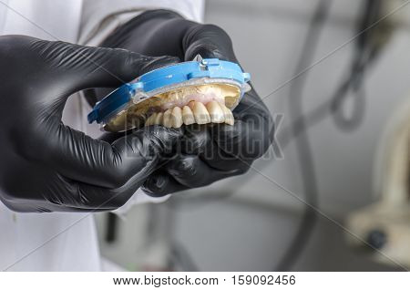 Dental Technician Holding A Monolithic Zirconia