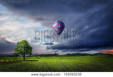 Parachute, meadow, landscape, tree, clouds, sunset, wheat