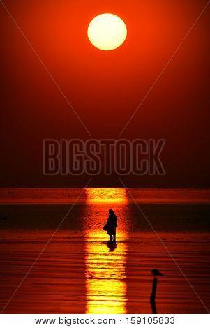 man fishing in the sunset light