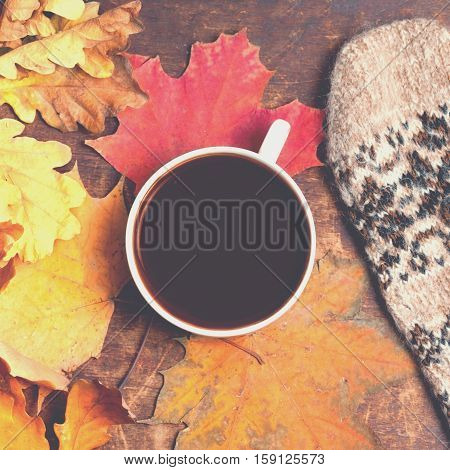 Autumn background with colordul leaves and hot coffee cup. Yellow Fallen autumn leaf