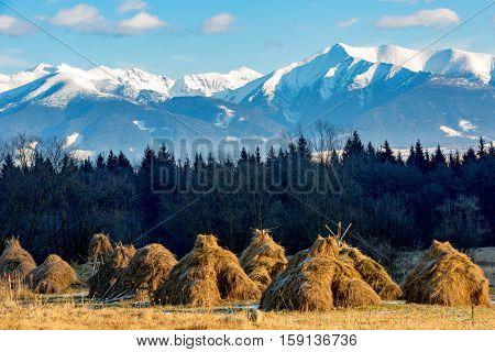 hays on farming meadow on mountain ridge background