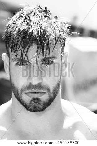 Handsome Man With Wet Hair