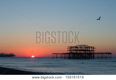 November sunrise between Brighton's piers, with calm sea and gull.