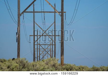 Line of Utility Poles Standing in the Desert
