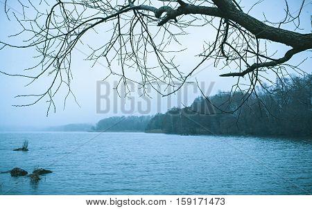 Bleak Cold Winter Lake Landscape