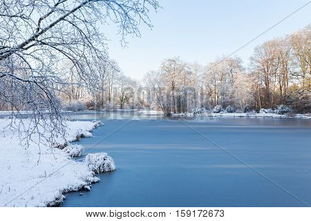 White winter landscape in a garden with frozen pond and trees covered by freshly fallen snow