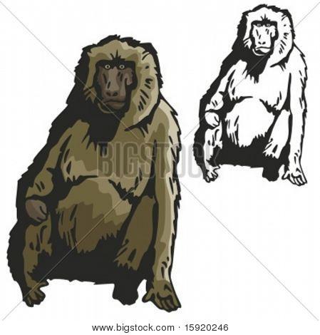 Vectorillustratie van een aap.