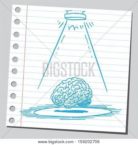 Brain in spotlight
