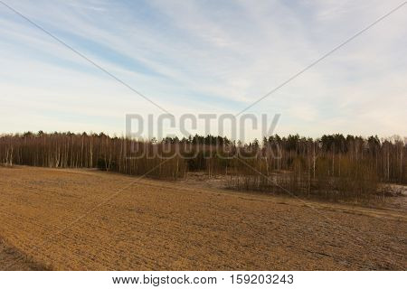 Small field with dry grass. Fantastic winter landscape.