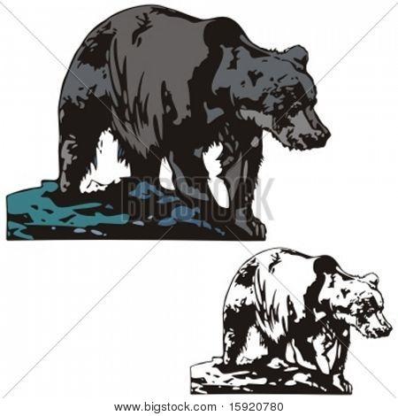 Ilustración del vector de un oso.