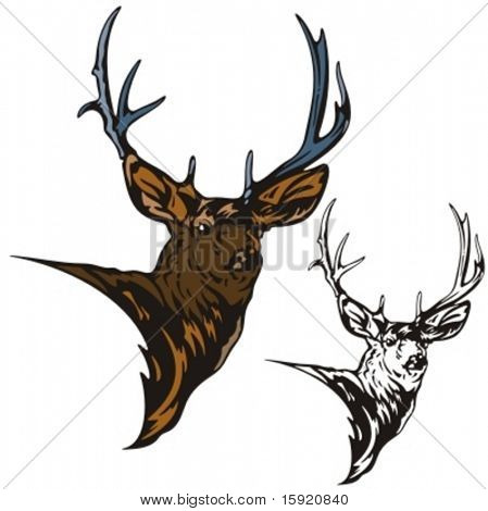 Vector illustration of an elk.