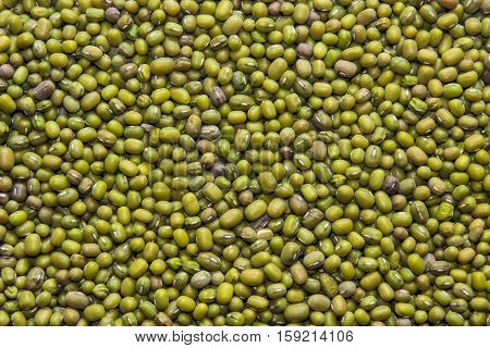 texture of many seeds (mung bean) background