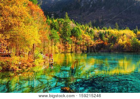 The Five Flower Lake (multicolored Lake) Among Fall Woods