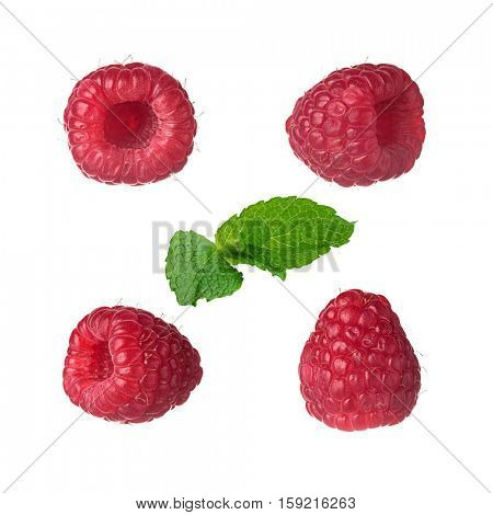 Collection of four different views of raspberry with no shadows, with an extra mint