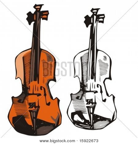 Music Instrument Series. Vector illustration of a violin.