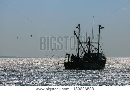 Silhouette of fishing boat on a calm sea with flock of birds and wind turbines in the distance