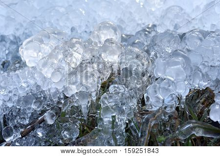 Abstract Ice Crystals On Frozen Plants