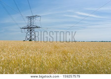 Angle strain transmission tower in wheat field in Ukraine.
