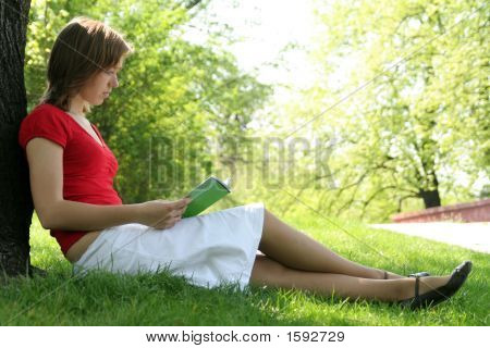 Woman Reading Book In The Park