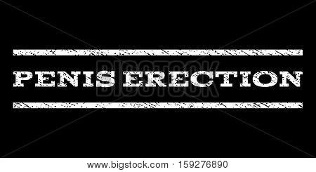 Penis Erection watermark stamp. Text caption between horizontal parallel lines with grunge design style. Rubber seal white stamp with scratched texture. Vector ink imprint on a black background.