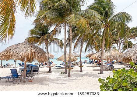 Palm beach on Aruba island in the Caribbean Sea
