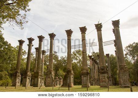 Site Of Windsor Ruins, Mississipppi
