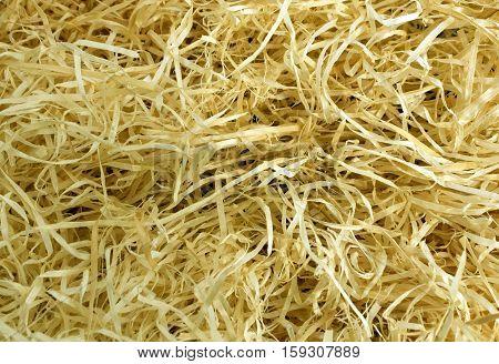 Yellow Wood Shavings Texture.
