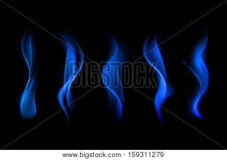 Vector Set of  Different Blue Fire Flame on Background