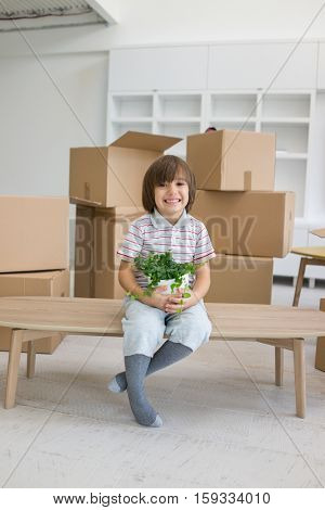 Little cute boy in empty room, remoove to new house home alone between boxes