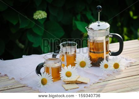 Cup of tea with chamomile flowers, on table, on green background